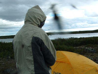 Campsite on Blackfly Island
